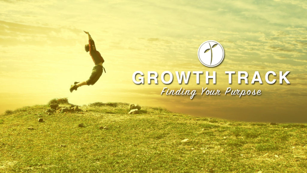 Growth Track 3